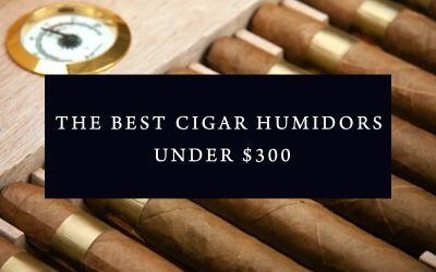 The Best Cigar Humidors under $300