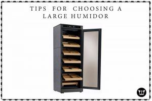 Tips  for  choosing a Large humidor