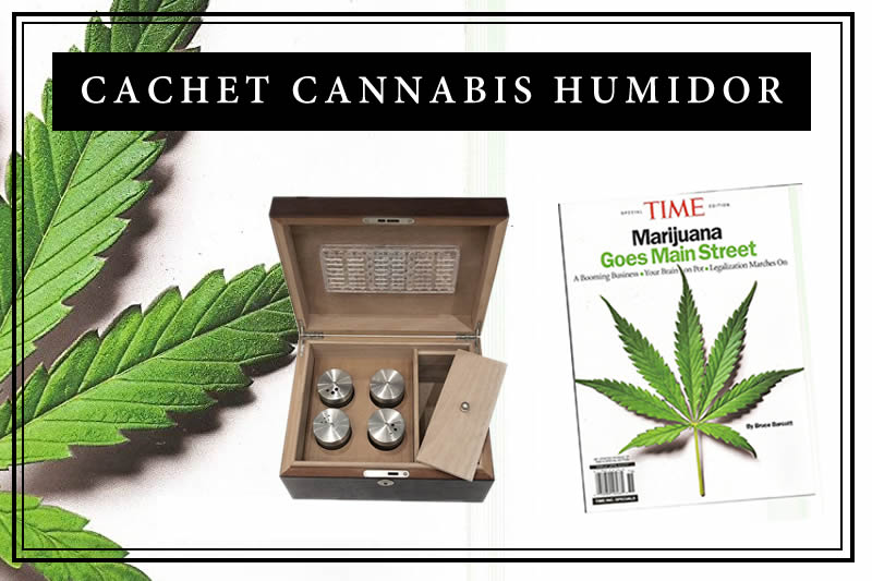 Cachet Cannabis Humidor Review